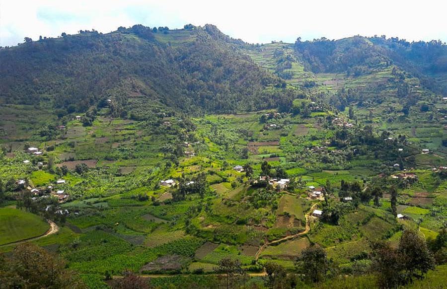 Bafumbira-settlement--in-western-Ugaanda